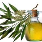 масло чайного дерева для волос, рецепты, от выпадения, для роста, от вшей, освежить, цена, фото, видео