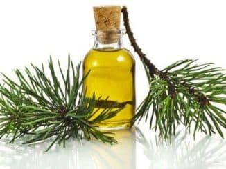 Пихтовое масло для волос, применение, отзывы, цена в аптеке