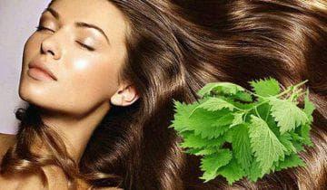 Народные средства и маски от выпадения волос